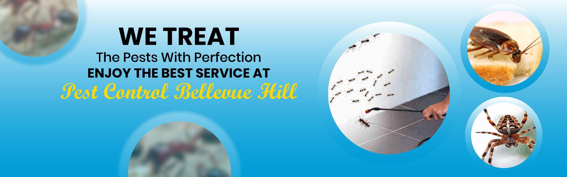 Expert Pest Control Bellevue Hill